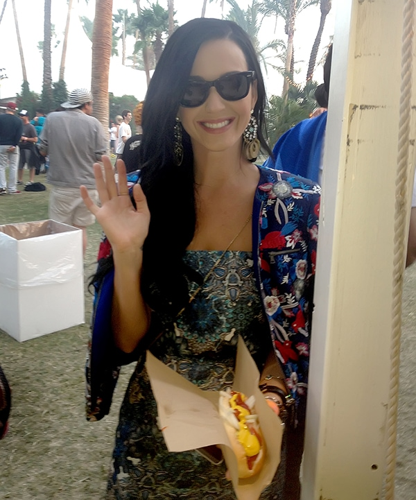 Celebrities at the 2013 Coachella Valley Music and Arts Festival - Week 1 Day 3